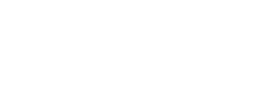 Healthcare Consulting & Advising - Settle Consulting, LLC - Dallas, TX